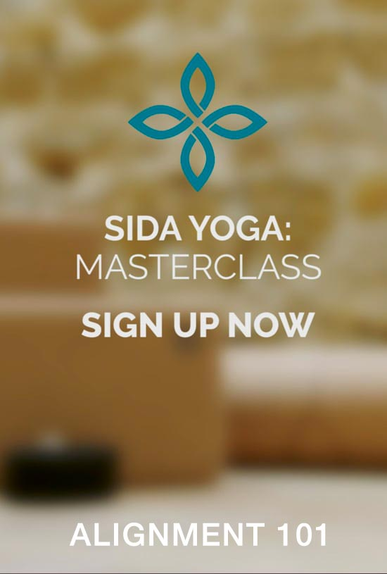 sida yoga alignment 101 workshop on demand practice subscription classes sessions learn anytime video
